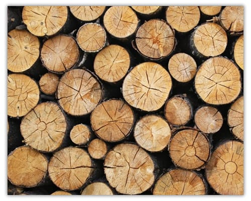 seasoned fuel wood